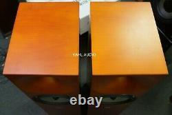 Amphion Neon floorstanding speakers. Rare, positive reviews! $5,500 MSRP