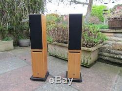EDWARDS AUDIO APPRENTICE SP Floorstanding Speakers stunning sound ex-demo