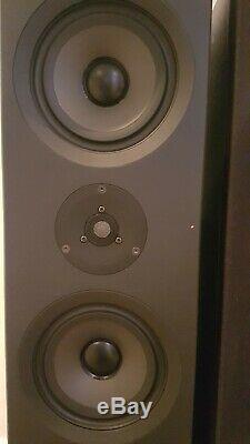 Linn Keilidh Floor Standing Speakers Audiophile Matched Pair