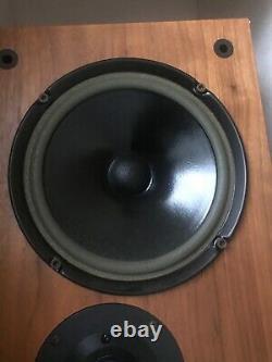 Living Voice Floor Standing Auditorium Speakers Good Condition