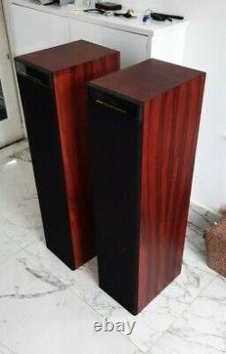 MERIDIAN DSP 5000 ROSEWOOD DSP FLOOR STANDING Stereo speakers