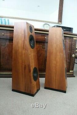 Naim Ariva Floor standing stereo speakers N-sat