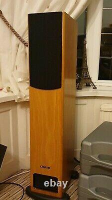 PMC FB1 Two-way Floorstanding Speakers (Matched Pair) in Oak veneer